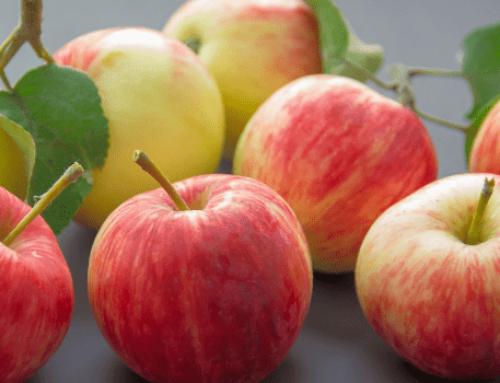 Una mela al giorno…..