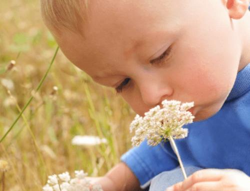 Maria Montessori, il ruolo della natura 🌳nell'educazione dei bambini
