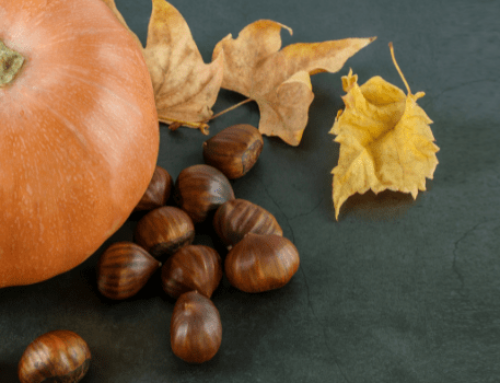 Ricette Tagesmutter in autunno